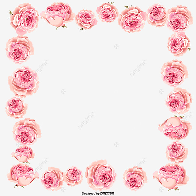 Vector pink magnolia flower border magnolia pink frame png and vector pink magnolia flower border magnolia pink frame png and vector maxwellsz