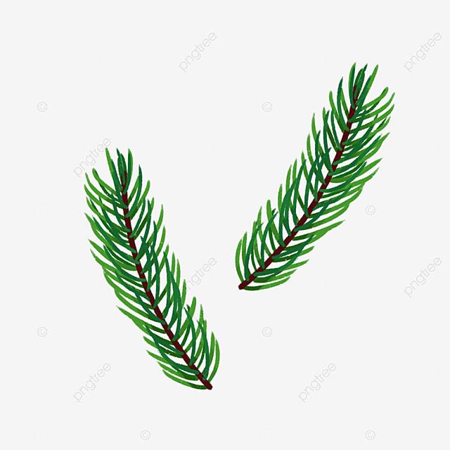 la paix vert olive branches  au nom de la paix au sens  un rameau d olivier  de l herbe verte de olive branch clip art free olive branch clip art divider
