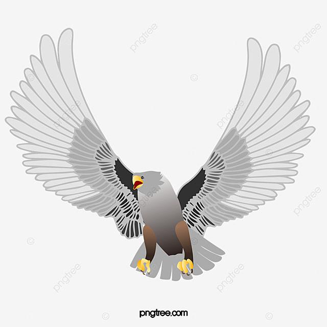 tatouage un tatouage des ailes d aigle fichier png et psd