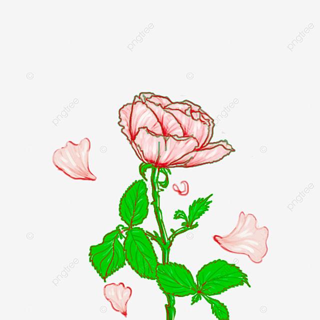 Flores De Fundo Transparente Padrao Flores Cor De Rosa Png Imagem
