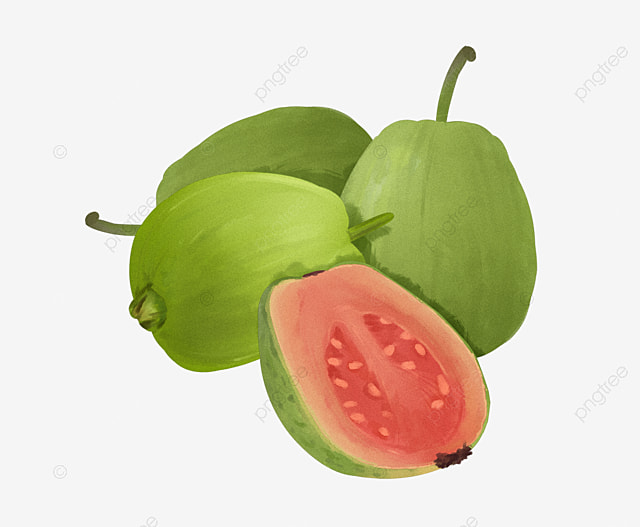 Guava Fruit Image Download