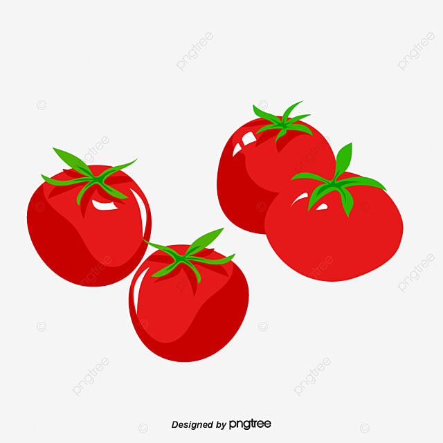 tomato fresh tomatoes sliced tomatoes png and psd file for free