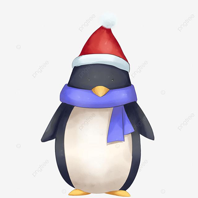 Cartoon Penguin, Cartoon Clipart, Cartoon PNG Image And