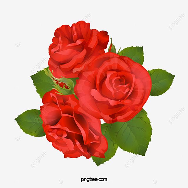 Com Rosas Vermelhas Folhas Verdes Flores Flores Png