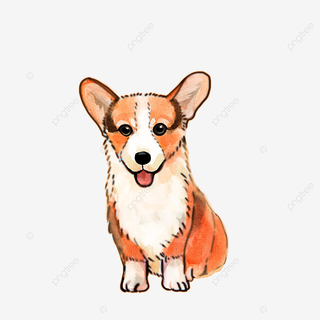 Animales De Dibujos Animados Perros Pintado A Mano Sombrero Perro ...