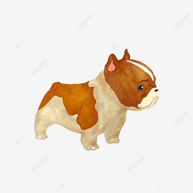 Pug Dog Images Free Download