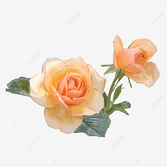 Clipart Yellow Roses on Transparent Wedding Clip Art
