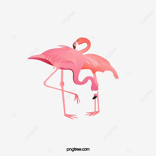 Drawing Flamingos Creative Ink Flamingos Animal Png Image And