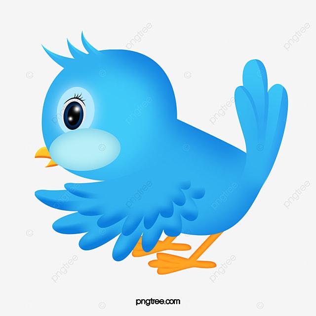 pássaro dos desenhos animados lindo passarinho azul penas png imagem