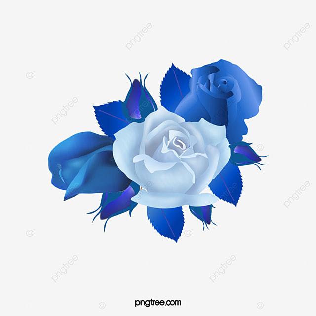 bleu de goutte d eau de rose de d u00e9coration dessin de