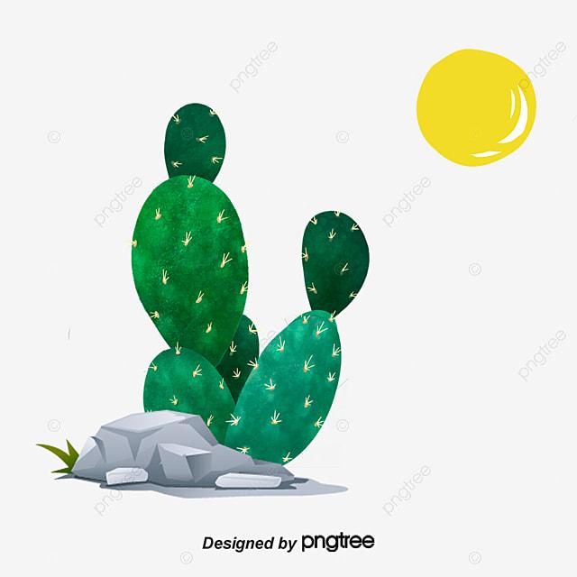 Мексика член