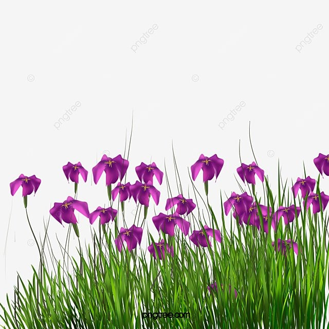 Aquatic Gardens Garden Landscape Grass Png And Psd File