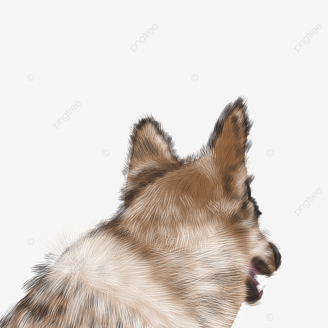 Gray Wolf Head, Wolf Clipart, Head Clipart, Langtou PNG ...