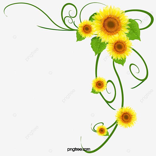 Beautiful Flowers Background Decoration, Beautiful