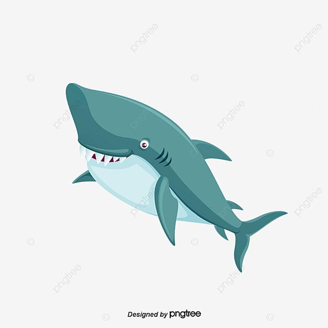 Cartoon Great White Shark, Cartoon Clipart, Shark Clipart