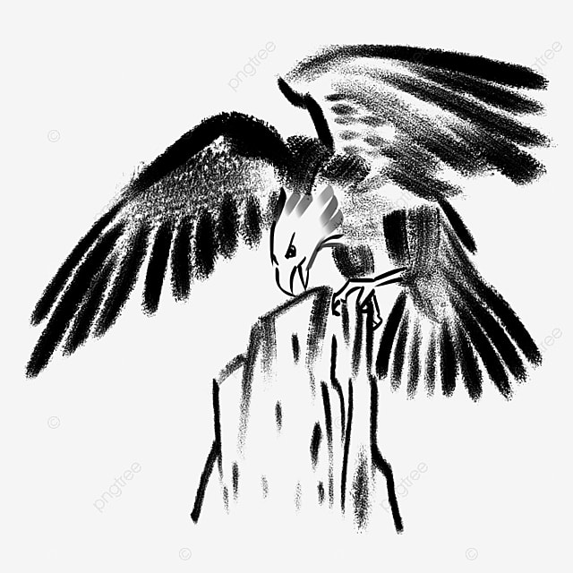 eagles head head clipart bald eagle great yingtou png image and rh pngtree com eagle head clipart black and white vector colorful eagle head clipart