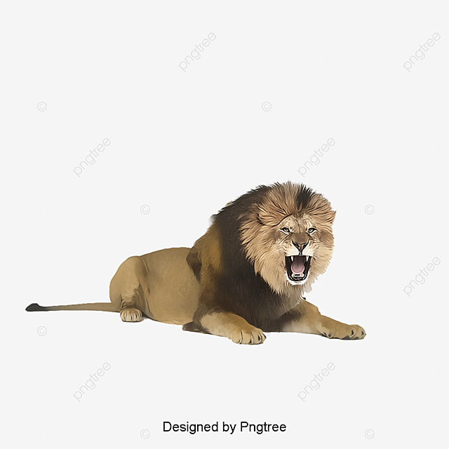 a lion lion clipart wild nature ecology png and psd file for free