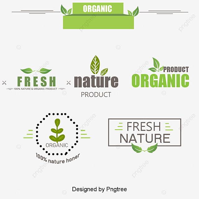 Organic Food In Italian