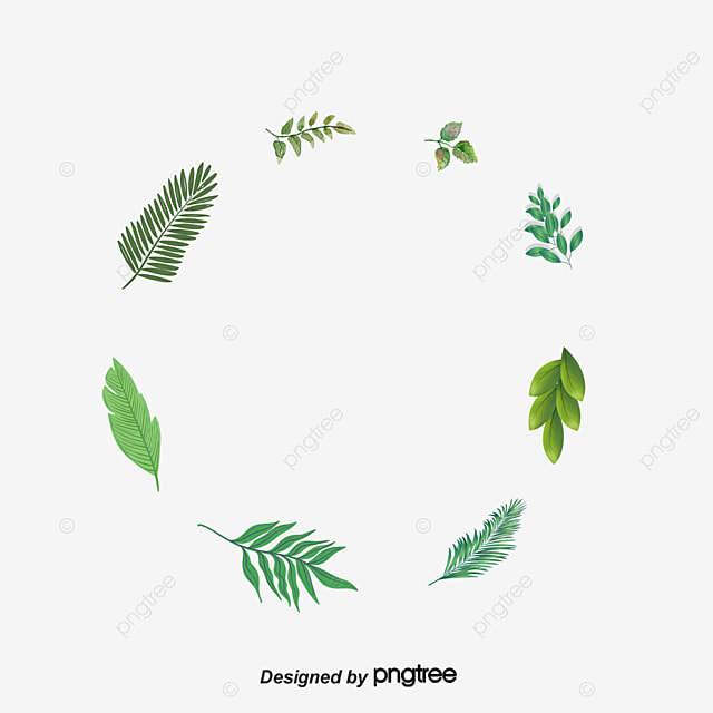 Green herbs, Circles, Green, Herbaceous PNG and Vector