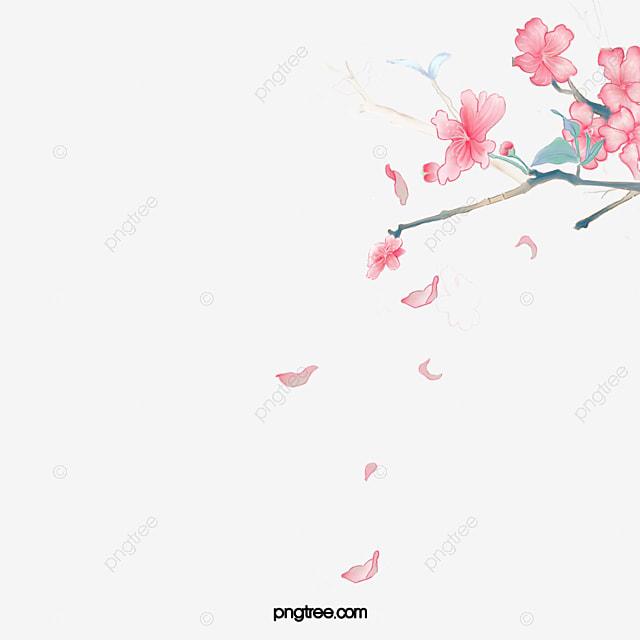 Des Fleurs Tombent Sur Les Petales Les Petales Seiches Tomber Image