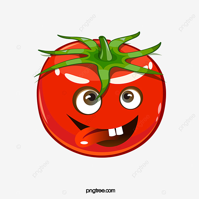 Cartoon tomatoes cartoon clipart tomato red png image and clipart for free download - Tomate dessin ...