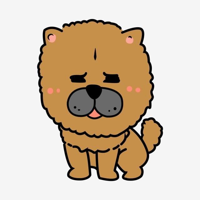 Chow puppy cute