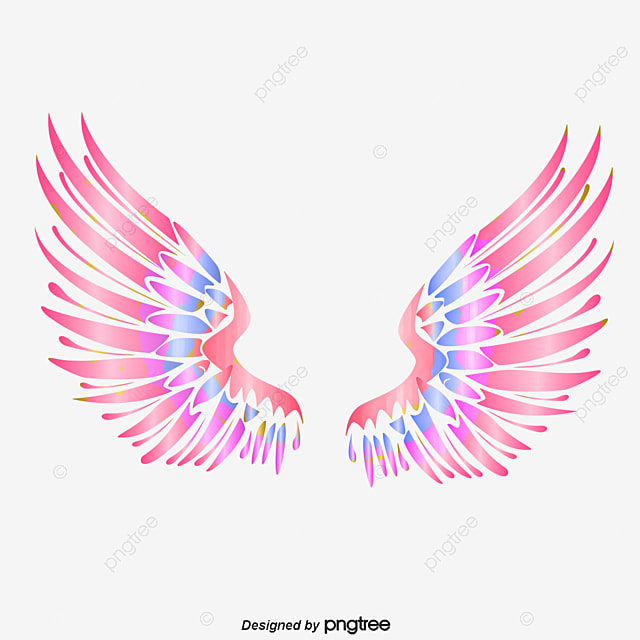 Colorful angel wings, Wing, Feather, Hand Painted PNG and PSD