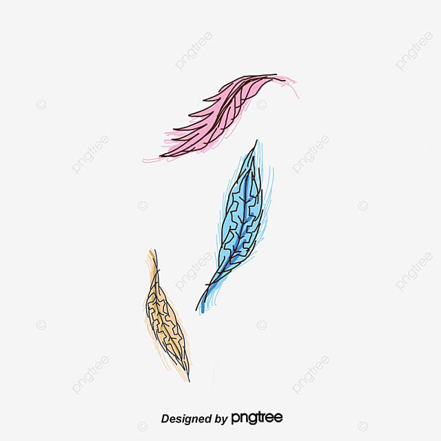 la cr u00e9ativit u00e9 de plumes plume la plume dessin de plumes png et vecteur pour t u00e9l u00e9chargement gratuit