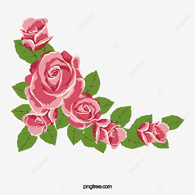 Pink Rose Border, Rose Clipart, Lace, Flowers PNG ...