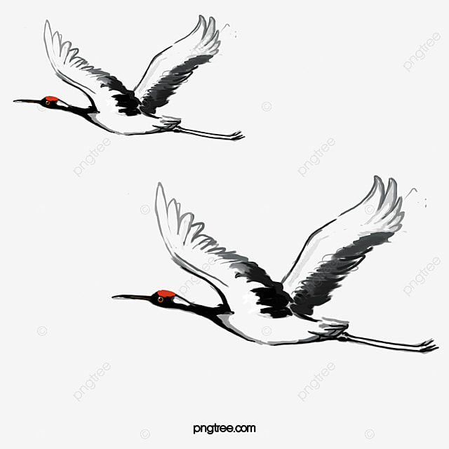 Crane Bird PNG Images | Vector and PSD Files | Free Download