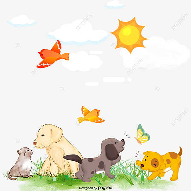 sun bird dog, Sun, Birds, Dogs PNG and PSD