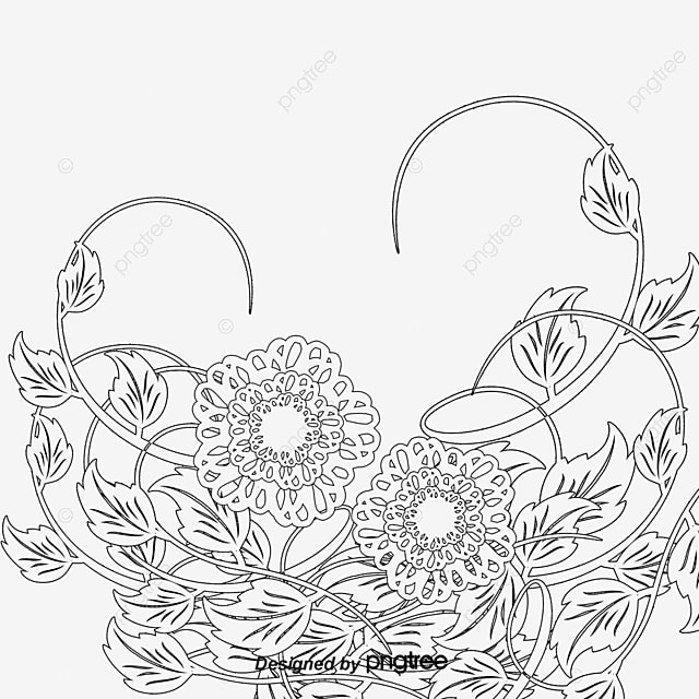 Free flower sketch pull material sketch black and white flowers png and psd