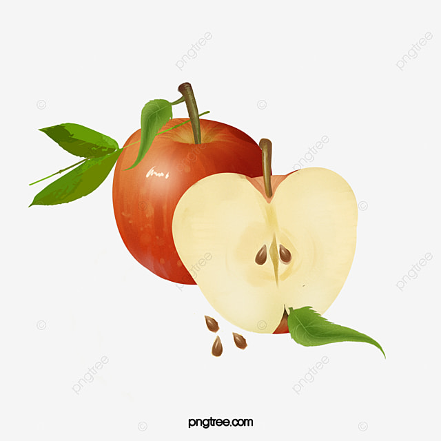 Red Watercolor Painted Apple, Watercolor Clipart, Red ... (640 x 640 Pixel)