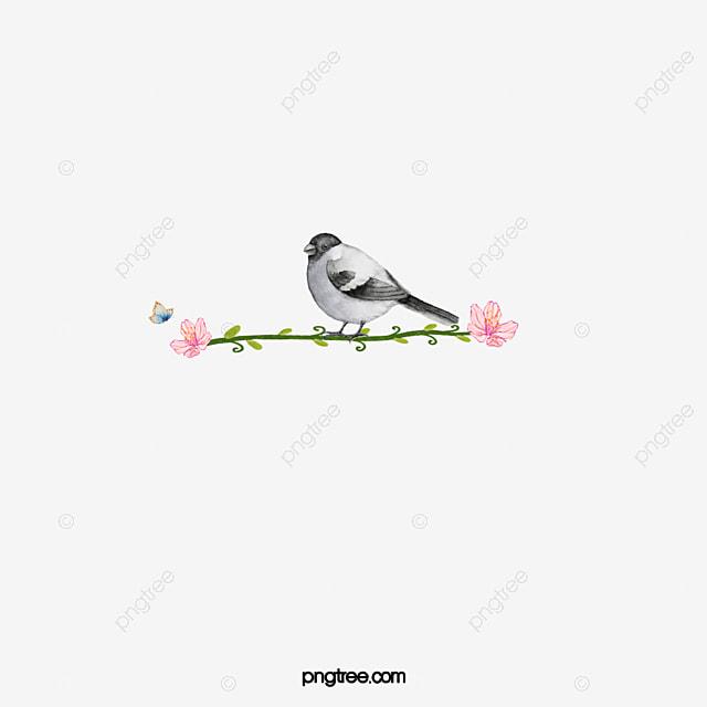 Petit Oiseau Sur La Branche De Fleurs De Dessin Anime Main Station
