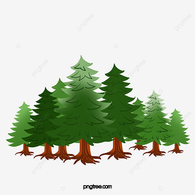 a row of pine trees pine plant environmental protection png image rh pngtree com green pine trees clipart pine trees with snow clipart
