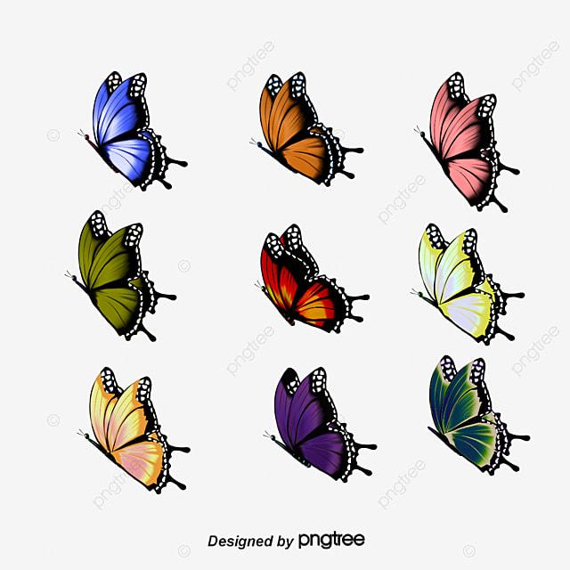Hermoso color pintado colorful cartoon butterfly dibujos - Imagenes de mariposas de colores ...