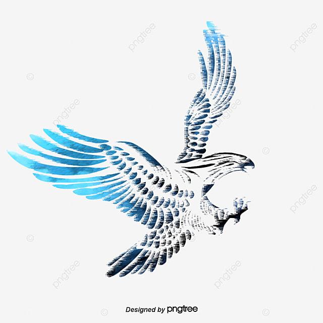 dessin de l aigle aigle dessin les oiseaux fichier png et