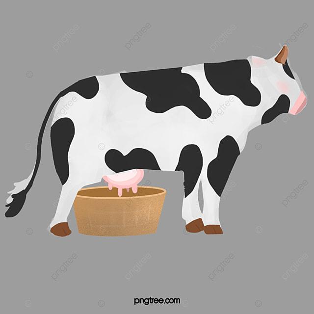 Cow Milk Animation Cartoon Cow, Cartoon, ...
