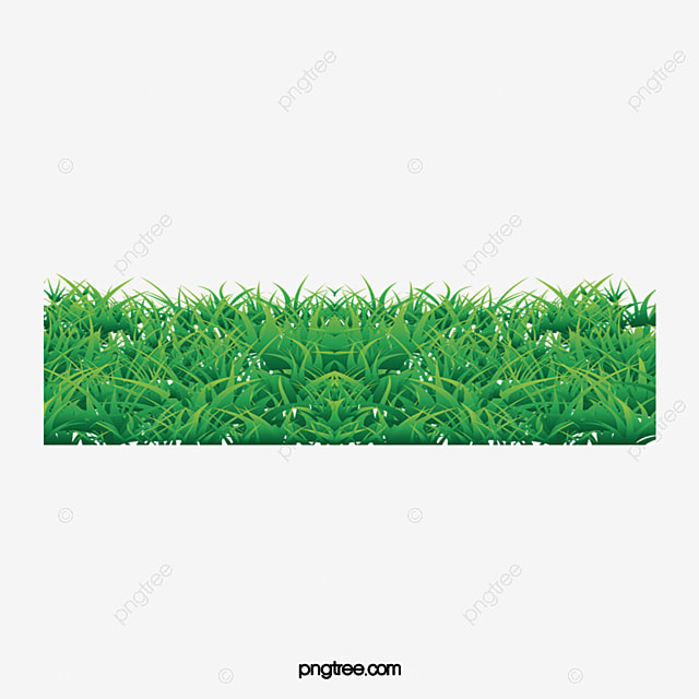 Plants Wall, Plants Clipart, Green, Wall PNG Image and Clipart for ...