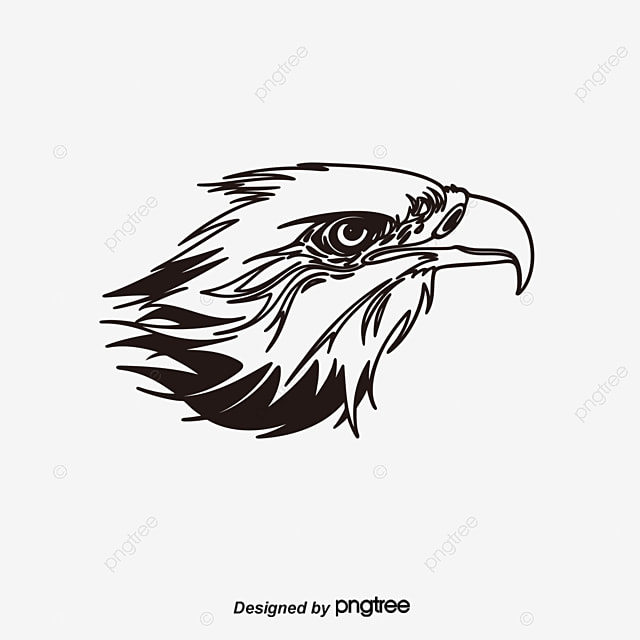 Eagle Logo Png, Vector, PSD, and Clipart With Transparent