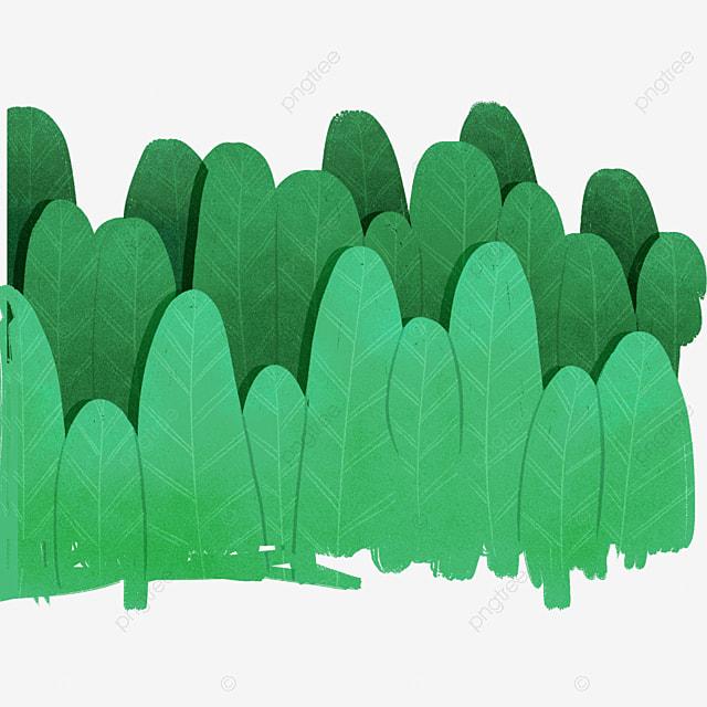 Verde De Los Arbustos Verde Bush Planta Imagen Png Para Descarga