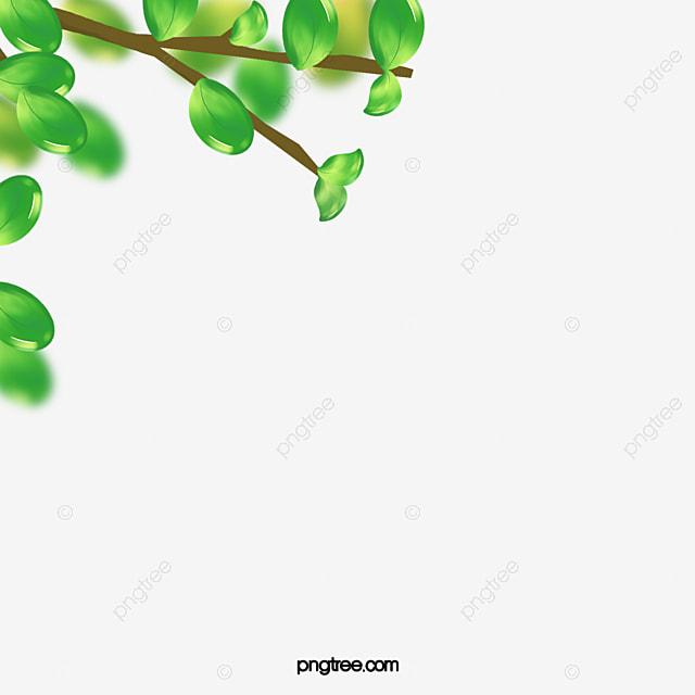 les feuilles de bordure les feuilles bordure fleur de