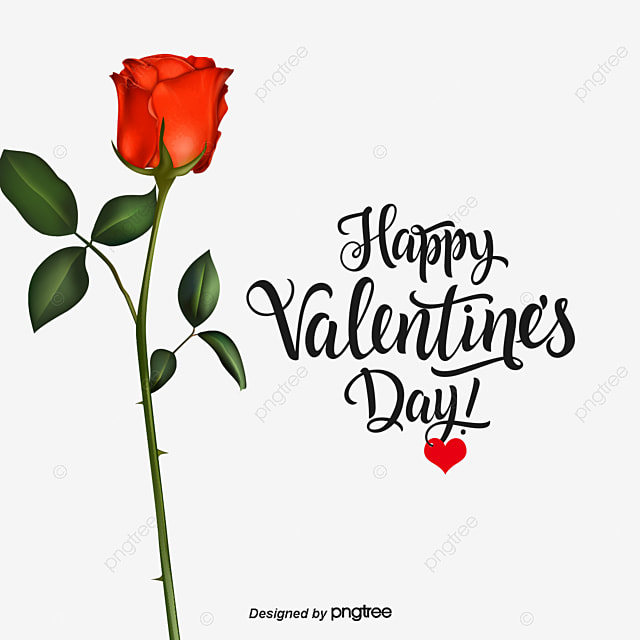 Happy Valentine S Day Pink Red Rose Tanabata Png And Vector For