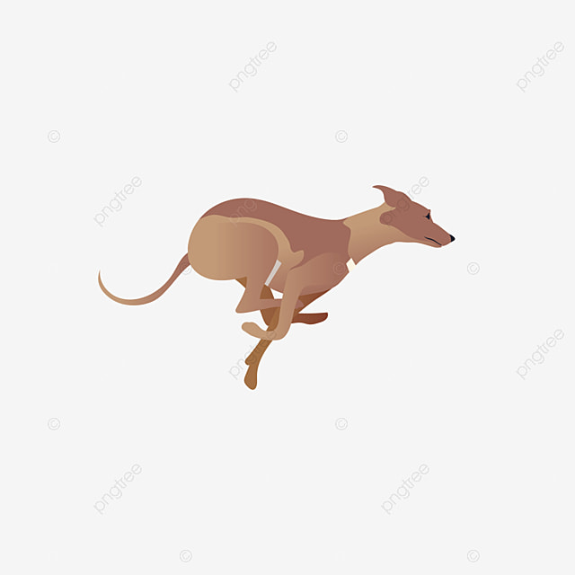Pictures Of Dogs And Cats Dog Cat Animal Png Image And