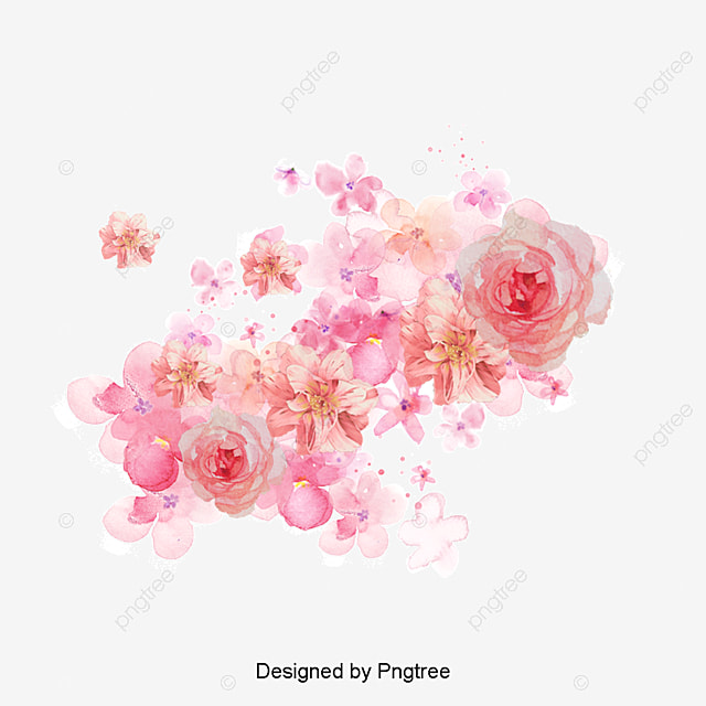 watercolor flowers shading pink flowers watercolor painted material png and psd