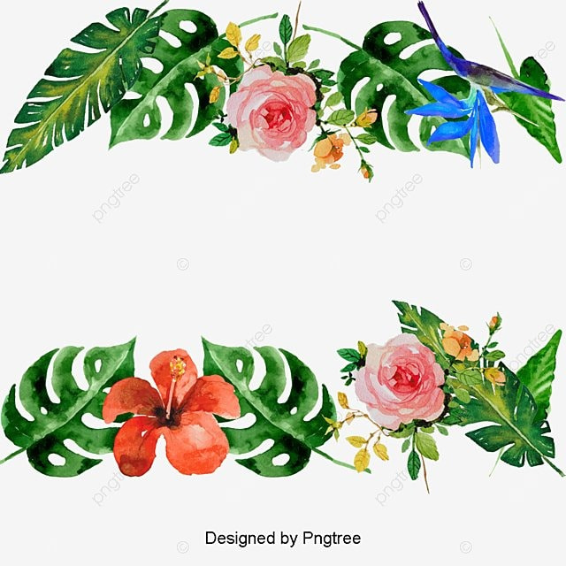 vector summer flowers d u00e9coration fleurs vecteur section