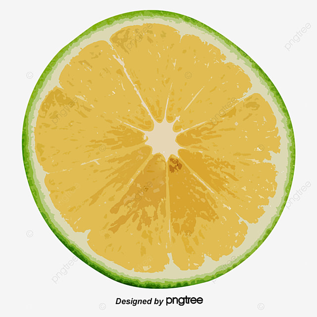 vector blue lemon slices green lemon slices vector lemon