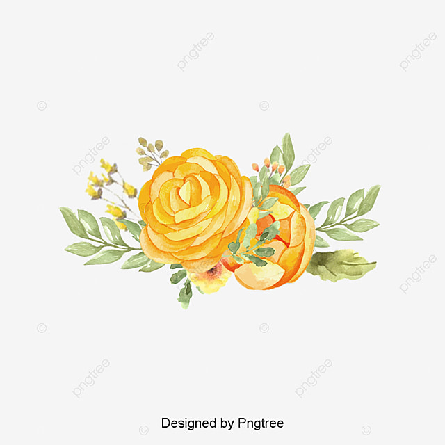 Floral Pattern PNG Images | Vector and PSD Files | Free