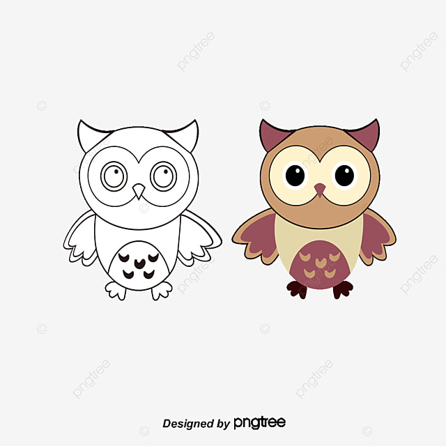 Para Colorear Dibujos Animados Búho Cartoon Animal Owl PNG y Vector ...