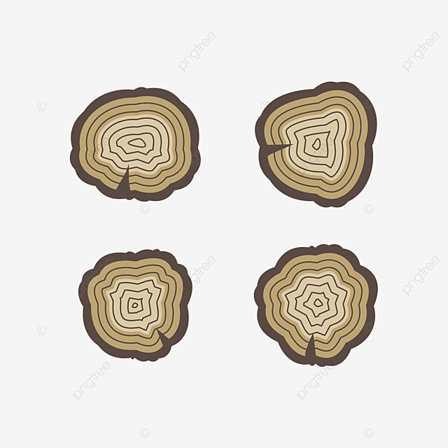 Flooring Pictures Wood Wood Floor Png And Psd File For Free Download